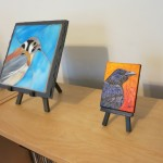 American Kestrel hanging out with Lisa Nelson's Corvid painting