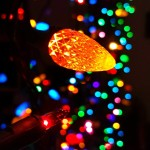 Creating an Oasis of Light and Color in the Winter: Wall of Lights
