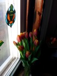 Tulips and a Turtle for the January Cure