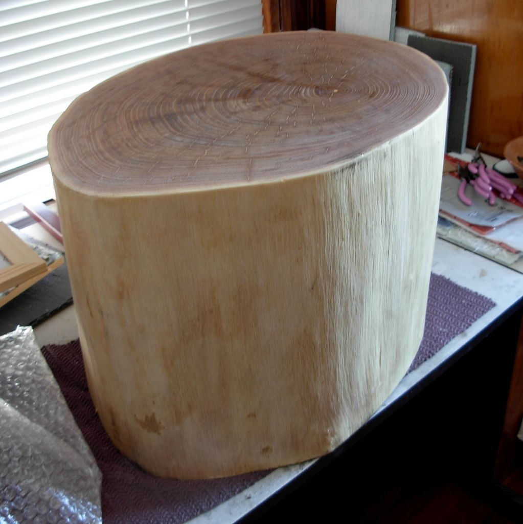 Catalpa Log in Margaret Almon's Studio